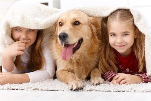 ¿Por qué a los niños les atraen tanto los animales?