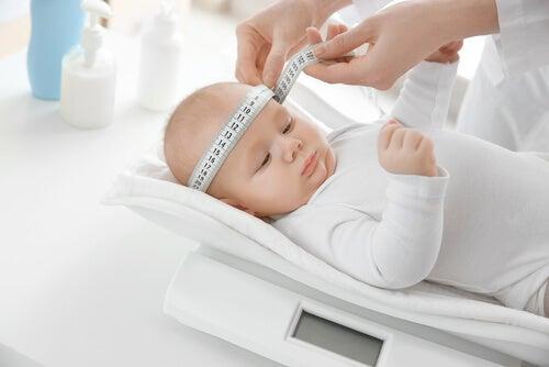 Los percentiles del bebé son necesarios para comprobar su correcto crecimiento.
