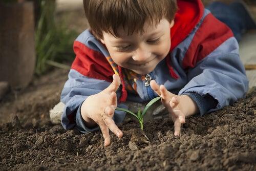La educación ambiental para niños debe empezar desde el hogar.