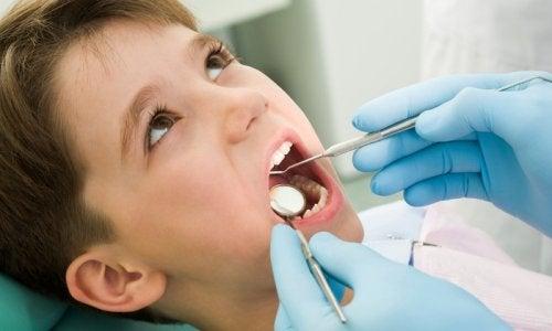 Les dents de lait chez les enfants commencent à tomber dès l'âge de cinq ans.