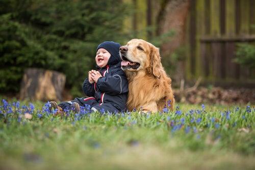 Cómo influye la pérdida de una mascota para los niños
