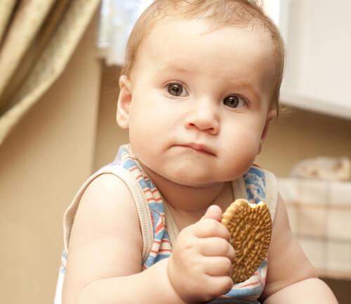 Las galletas pueden empezar a comerse a partir de los 6 meses de vida.