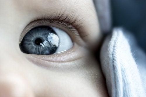 Cuando los bebés tienen los ojos grises al nacer, los padres quedan maravillados.