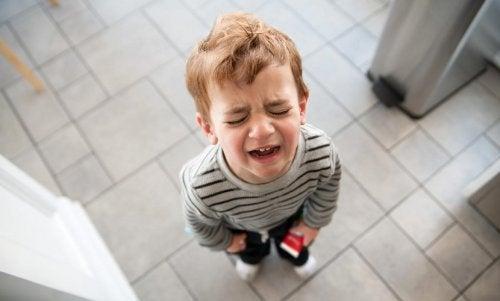 Los llantos pueden calmarse con el uso del frasco de la calma.