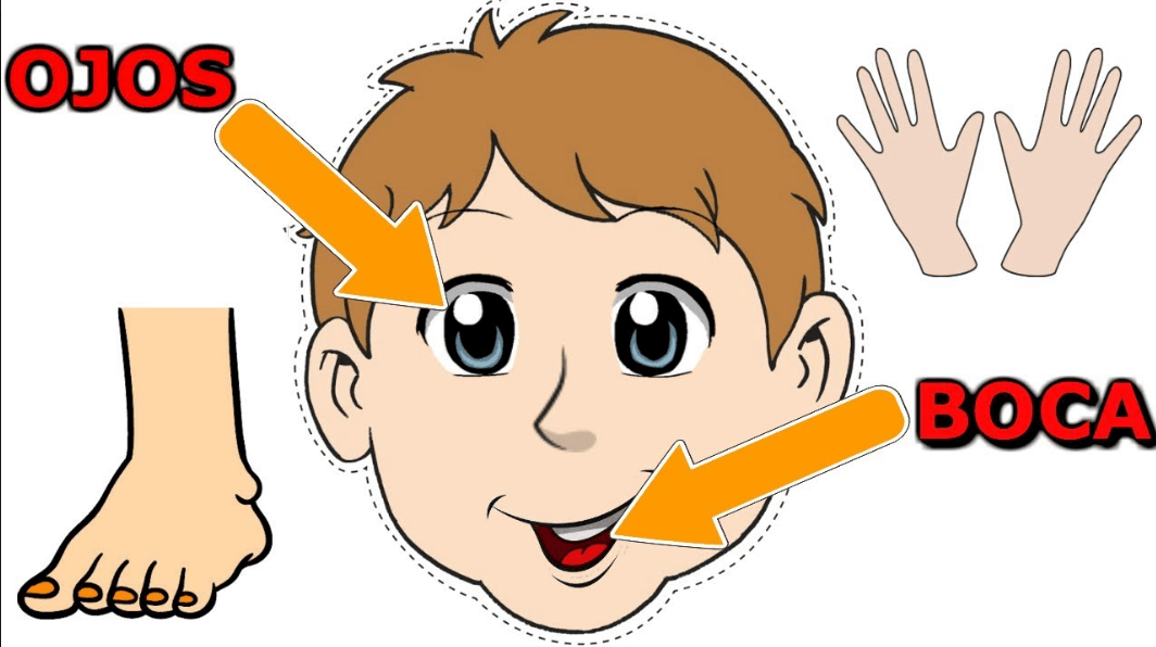 Cómo crea el niño su imagen corporal.