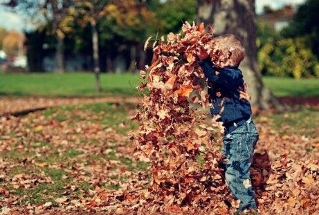 Nino con un nombre de origen germánico jugando con hojas.