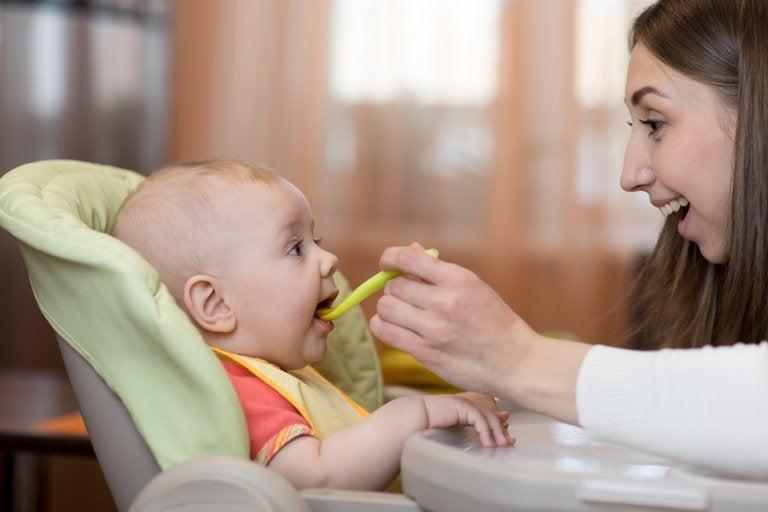Recetas saludables para bebés de 6 a 9 meses