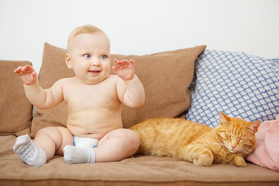 ¿Es bueno que los recién nacidos convivan con animales?
