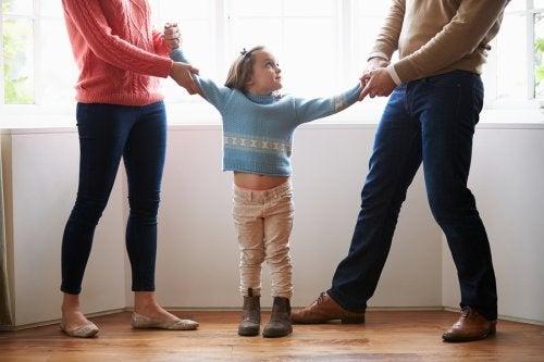Existen diversos tipos de custodia para remediar todas las circunstancias que se presenten.