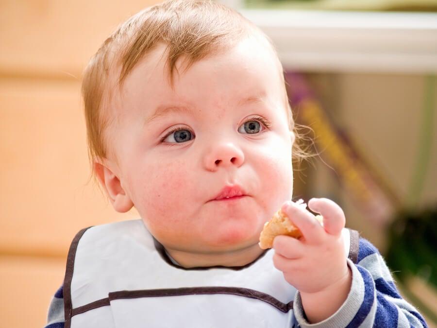 introducir huevo dieta bebe