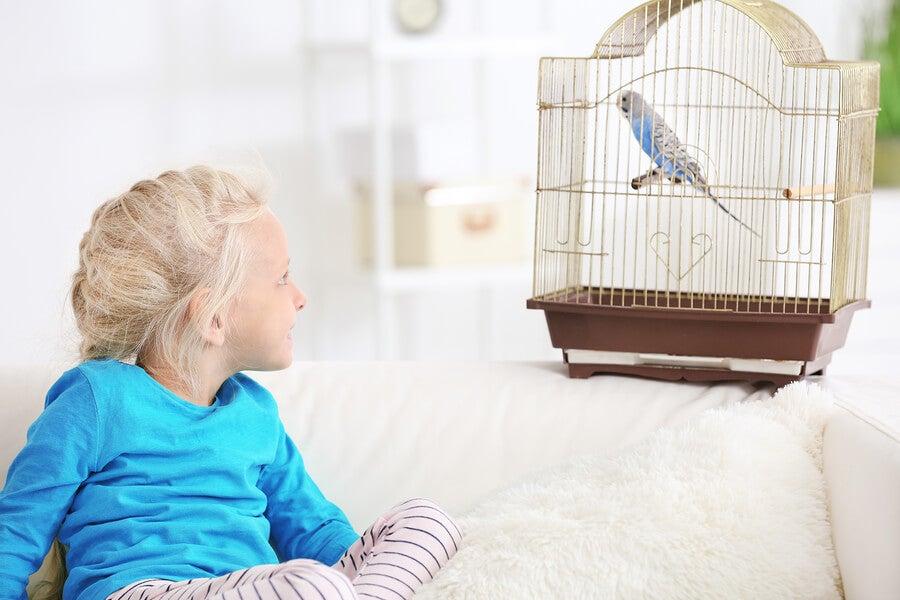 Ventajas de que los niños tengan contacto con animales