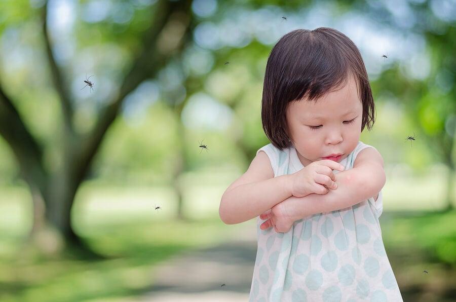 ¿Por qué a mi hijo le pican siempre los mosquitos?