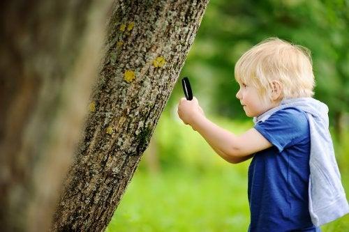 Las salidas al campo con niños les brindan oportunidades para explorar y divertirse.