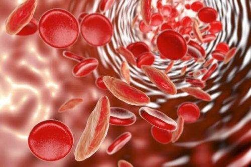 La anemia en la adolescencia está muy ligada a una carencia de glóbulos rojos.