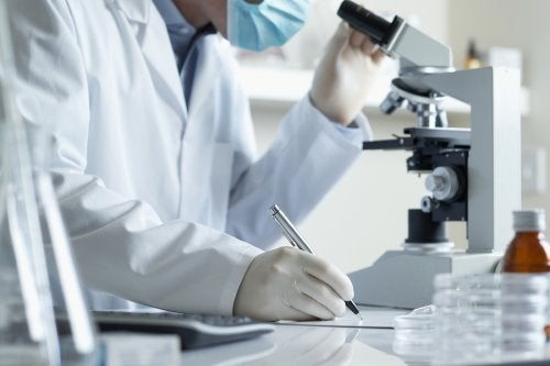 ¿Qué es el diagnóstico genético preimplantacional?