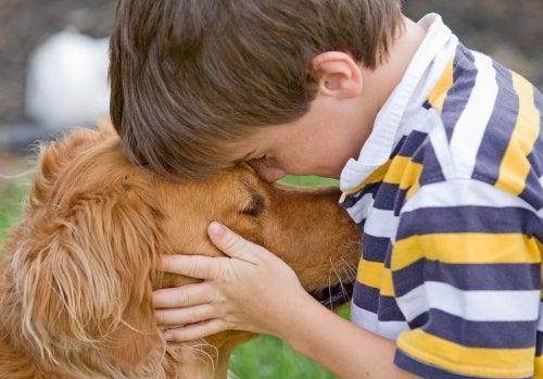 Se debe analizar los tipos de perros más adecuados para niños, ya que no todos los animales se integran en el hogar.