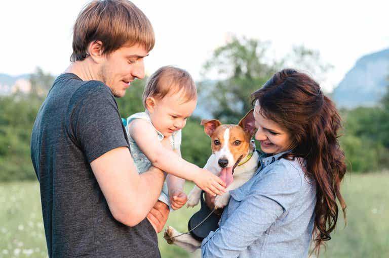 ¿Qué hacer con mi mascota ante la llegada de un bebé?