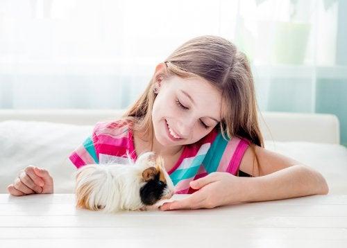 7 mascotas para niños si vives en la ciudad