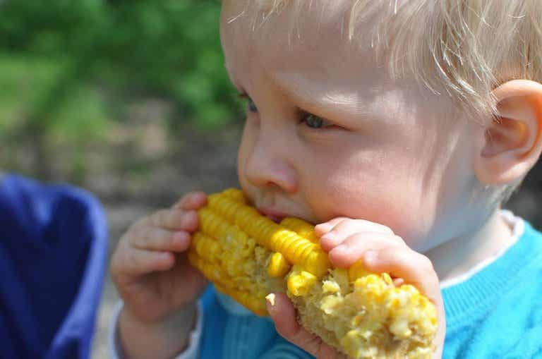 ¿Cómo hago que mi hijo siga una dieta vegetariana?