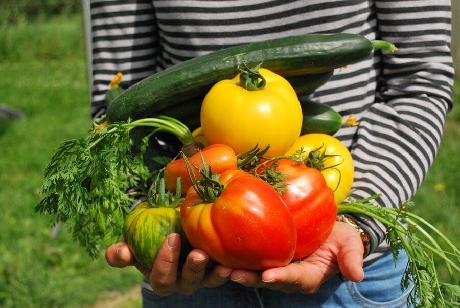 Niños que siguen dieta vegetariana