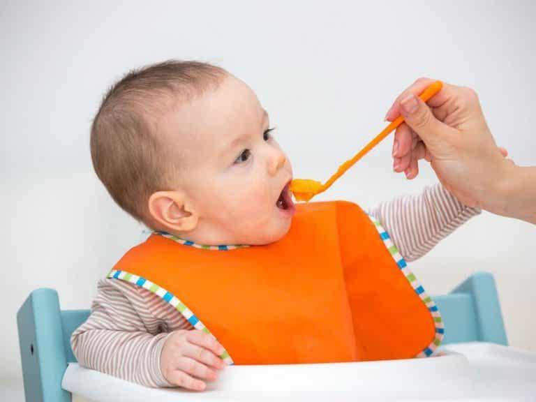 Recetas de papillas para bebés de 6 meses