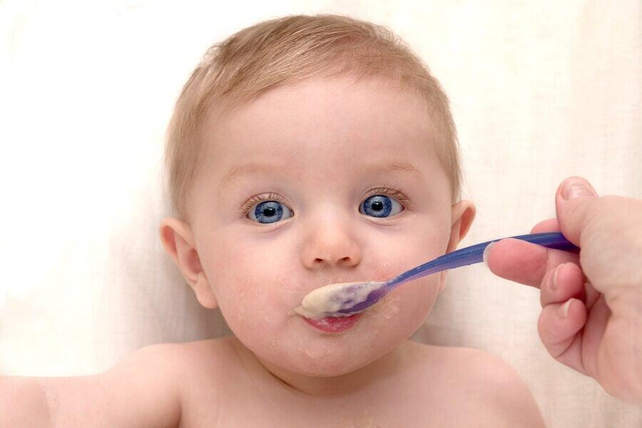 bebe-comiendo-pure-de-avena