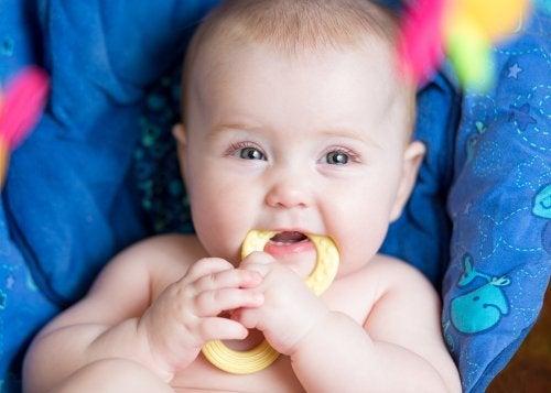 ¿Qué mordedor es el mejor para el bebé?