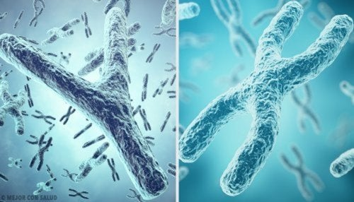Alteraciones cromosómicas autosómicas.