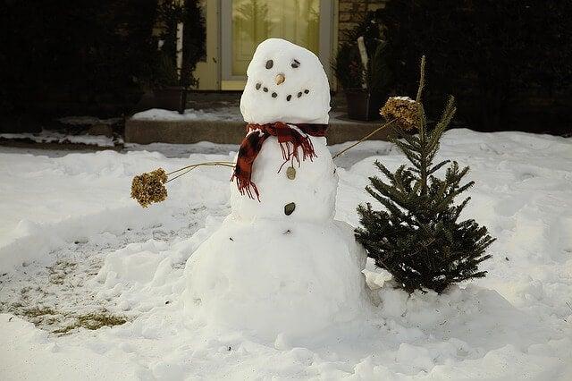 Juegos en la nieve para compartir en familia.
