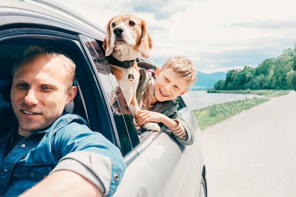 Un padre y su hijo se asoman por la ventanilla de su coche para familias numerosas. El perro familiar también se asoma por la ventanilla junto al niño.