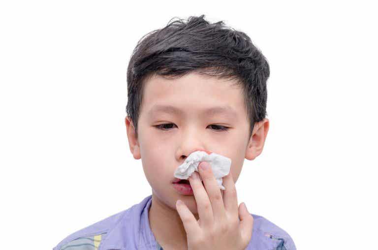 A mi hijo le sangra mucho la nariz, ¿qué debo hacer?