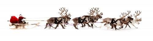 Papá Noel en el trineo con sus renos.