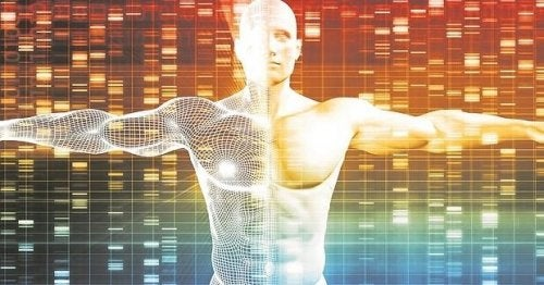 Genética para niños: ¿qué son los genes y los cromosomas?