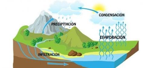 Existen numerosos libros infantiles sobre el agua que explican el ciclo del agua.
