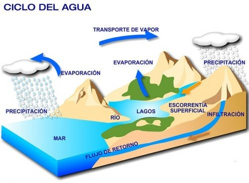 Cómo explicar el ciclo del agua a los niños.