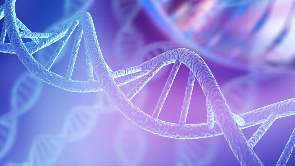 Cómo explicar el ADN a los niños