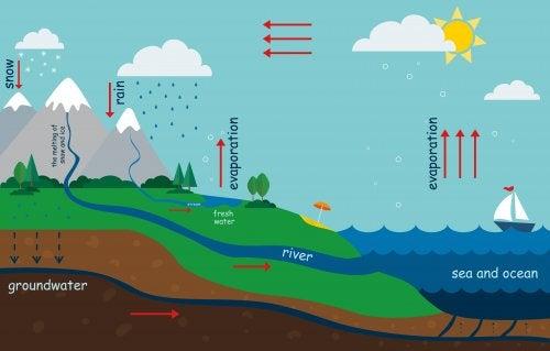 Cómo explicar el ciclo del agua a los niños