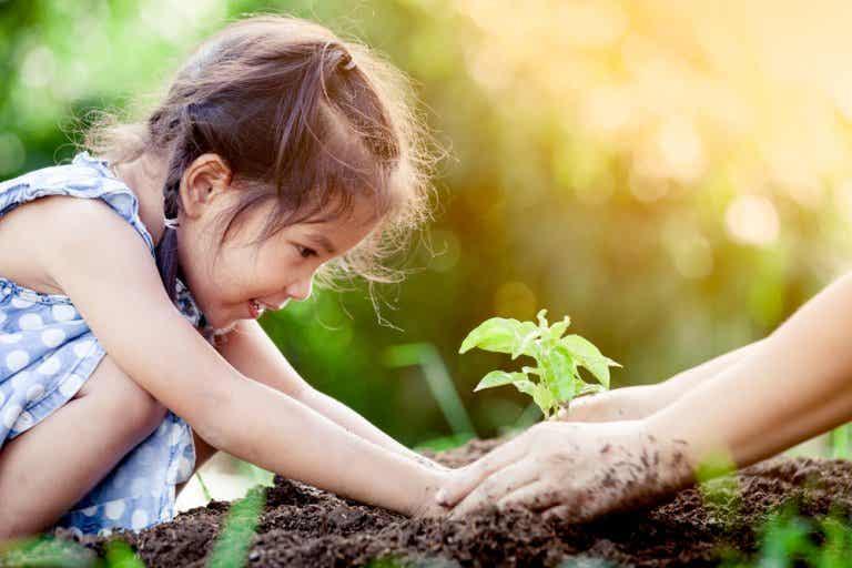 El ciclo de la fotosíntesis para niños