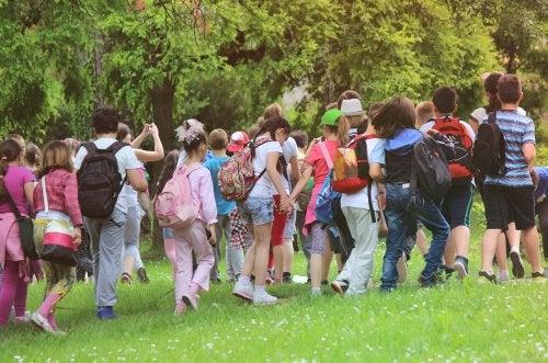 Responsabilidad en caso de accidente en una excursión escolar.