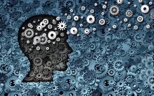 ¿Qué es la Psicología Evolutiva?