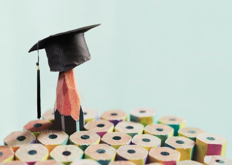 Principios básicos de la educación basada en competencias