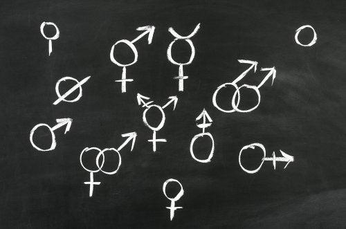 Desarrollo afectivo-sexual