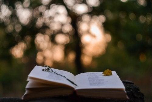 Beneficios de la poesía para los niños