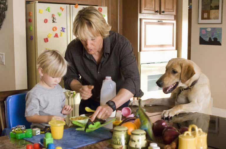 Películas que enseñan a los niños el amor por los animales