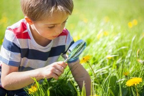 Niño con una lupa mirando flores en el campo aplicando el aprendizaje invisible.
