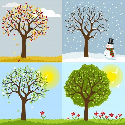 Libros infantiles sobre las estaciones del año.