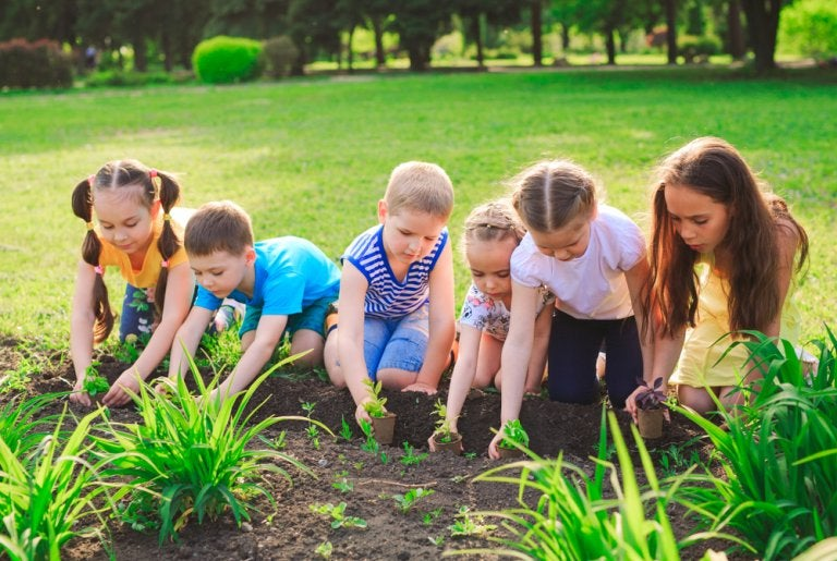 Ecología para niños: experimentos que enseñan a respetar el planeta