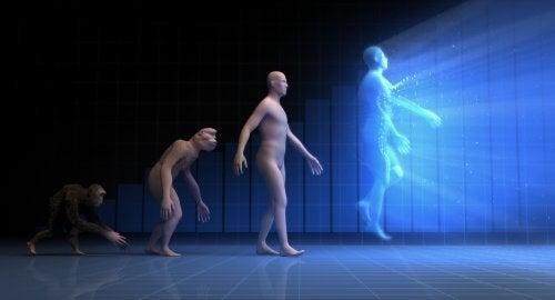Evolución humana.