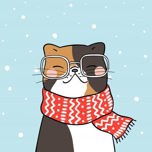Gato con gafas y bufanda bajo la nieve.