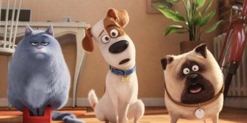 Imagen de la película infantil Mascotas 2.